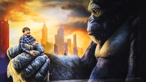 3D Art World - King Kong
